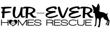 Fur-ever Home Rescue